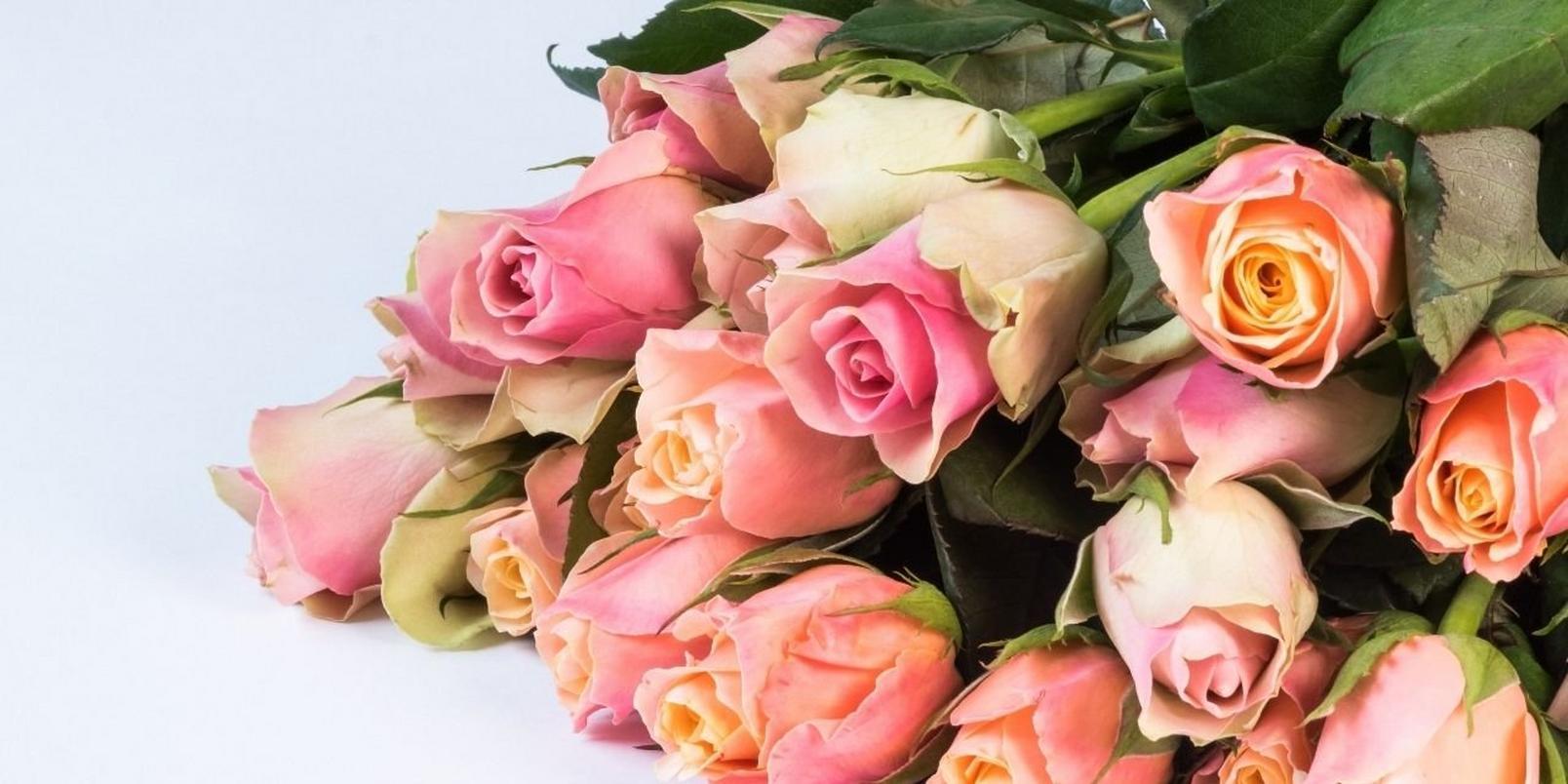 Pink-rose-bunch-1